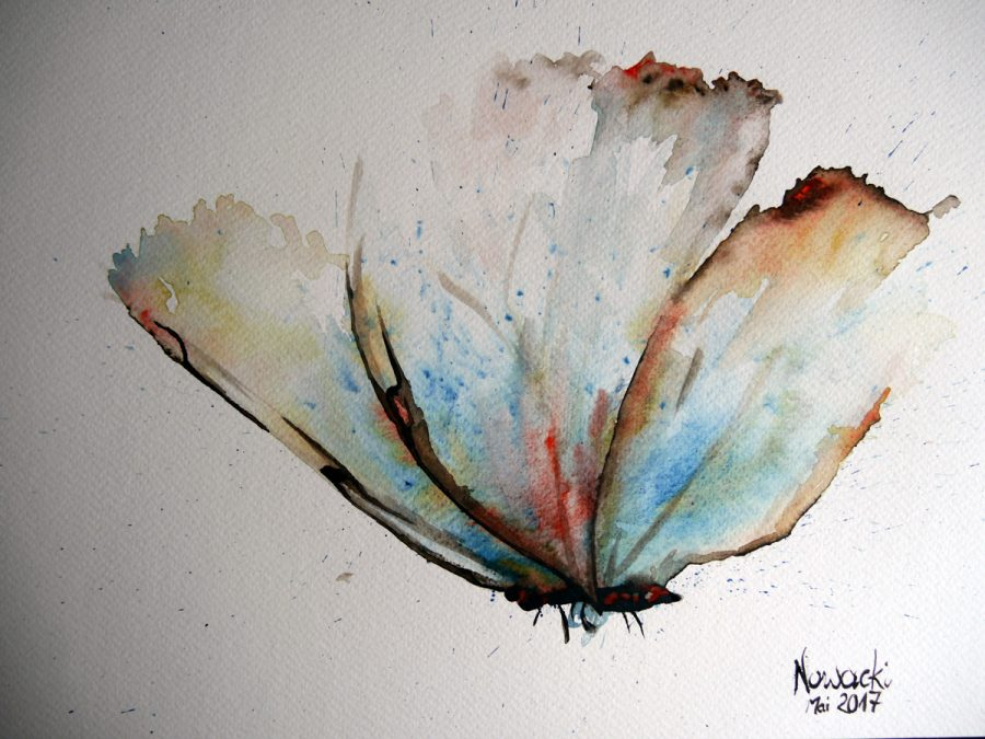 Schmetterling in Aquarell.